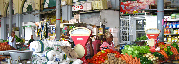 The food systems approach: sustainable solutions for a sufficient supply of healthy food