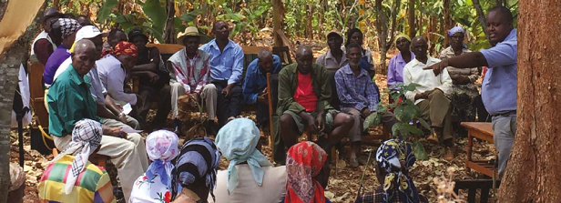 Agribusiness-based advisory services (ABAS) project - report and workshop