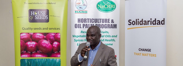 "ARF ""Grafted Tomato"" project launched in Uganda"