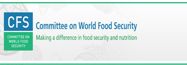 Committee on World Food Security plenary session 45