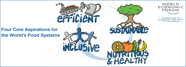The Food Systems Approach: inspiring an innovative way for SDG2 impact?