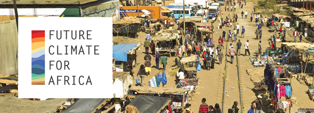 Webinar - Policy Coherence for Sustainable Development in sub-Saharan Africa
