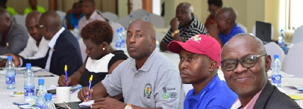 Strengthening agribusiness Ethics, Quality Standards & ICT