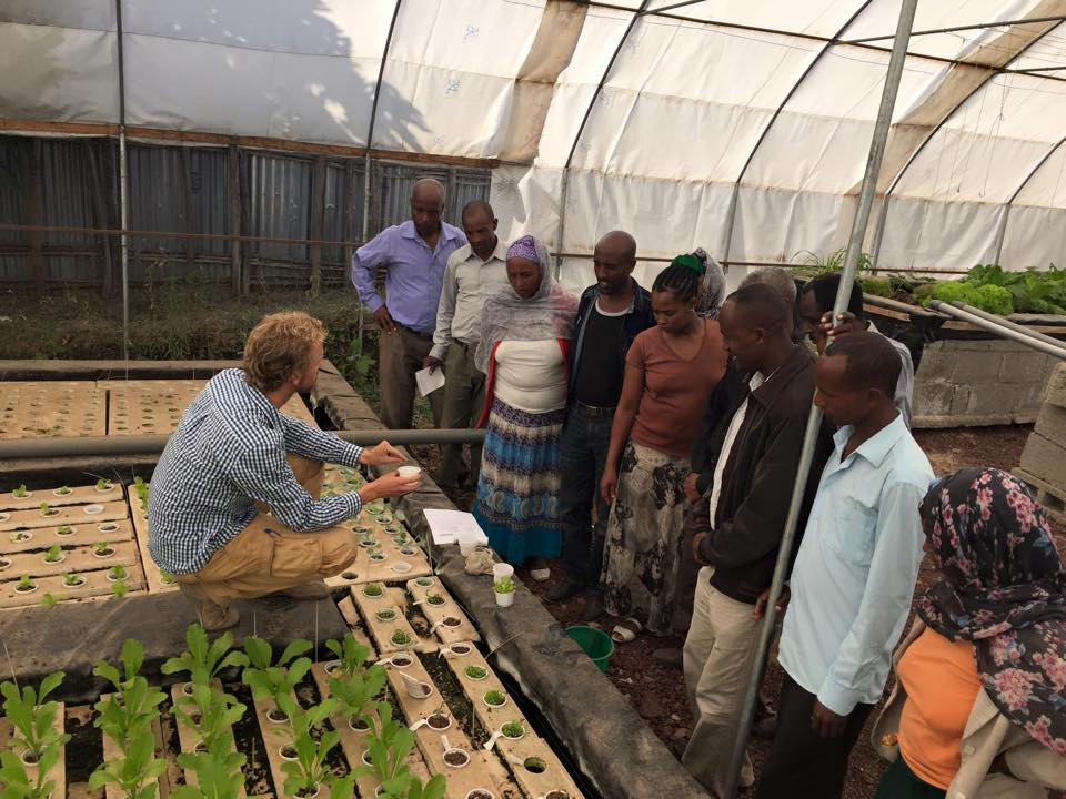 Aquaponics: profitbale business models and increasing food security