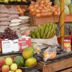 GCP-2 midterm factsheet WFE Women Food Entrepreneurs