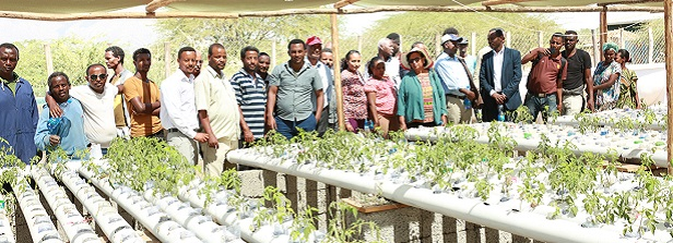 Aquaponics: combining profitable business models with increasing food security