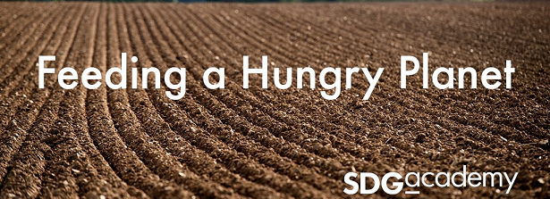 Online Course: Feeding a Hungry Planet
