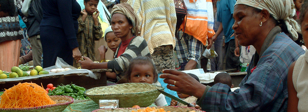 Repairing food systems failures: Policies, Innovations & Partnerships
