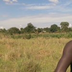 Young farmer in another community in the Central Region Malaw