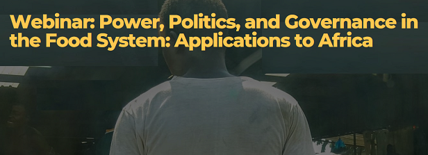 Power, Politics, and Governance in the Food System: Applications to Africa