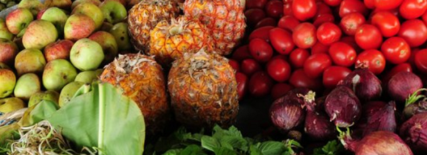 On the Menu – Can Food Be the Planet's Medicine?