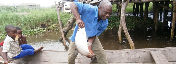 Improving the resilience of inland fishery in Benin - Hewlett Grant