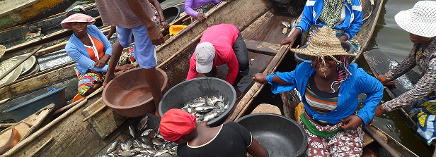 ARF-2 final factsheet: Inland fisheries Benin
