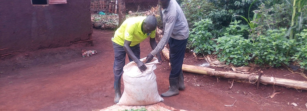 ARF-3.2 midterm factsheet Seeds Uganda