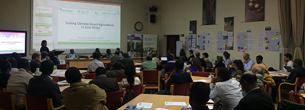 Scaling climate-smart agriculture in East Africa: A role for all stakeholders taking into account contexts and needs