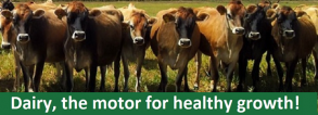 Dairy, the motor for healthy growth