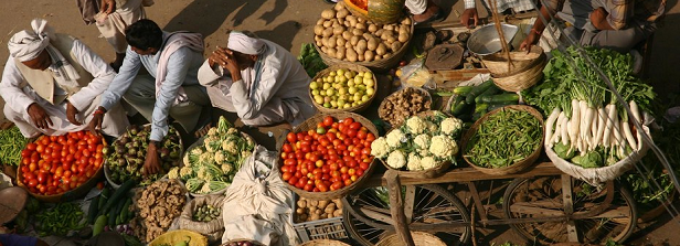The economics of food safety in India – a rapid assessment