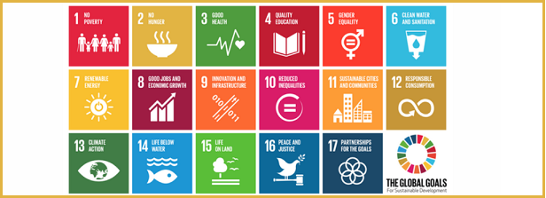 """Seminar """"Technologies and systemic changes: The way towards SDG2 in Dutch agriculture"""""""