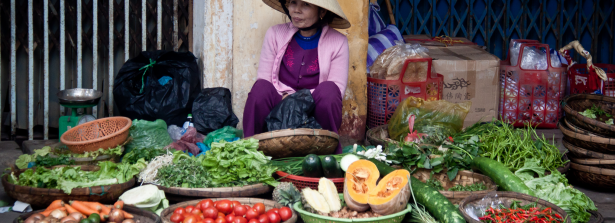 SSD Call project - Integrated vegetable seed systems development in Vietnam