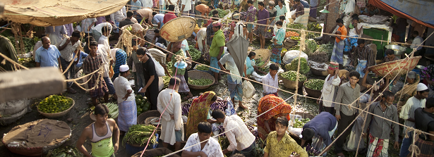 Feeding Cities and Migration