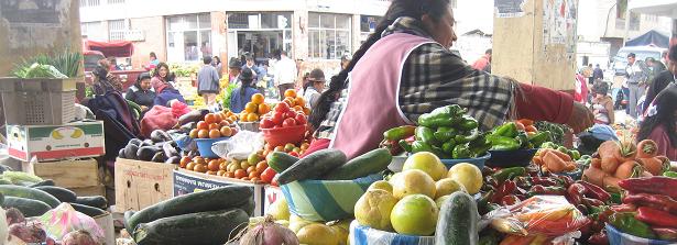 Report CoP Food Systems Governance Mechanisms - December 13, 2019