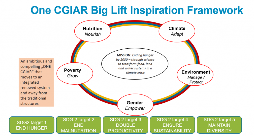 One CGIAR Big Lift framework as proposed by Wijnand van IJssel