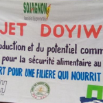 Video on Doyiwé seed fair