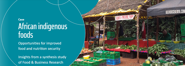 FBR Synthesis Study - African indigenous foods