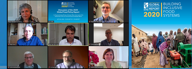 Virtual Discussion Global Food Policy Report 2020