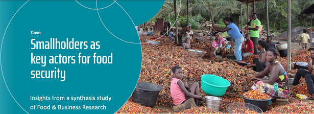 Synthesis Study - Smallholders as key actors for food security