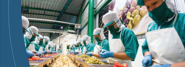 Webinar Food Safety Handbook