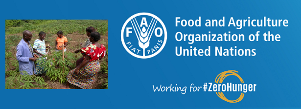 Webinar FAO Extension and Advisory services