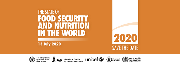 Launch State of Food Security and Nutrition in the World 2020 (SOFI)