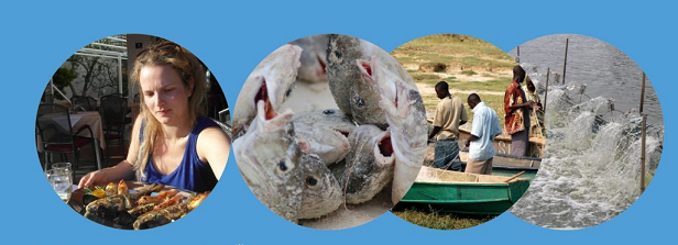 A food systems perspective on seafood