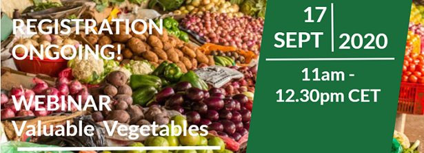 Webinar Valuable Vegetables: synthesis of lessons from Dutch investments in the horticulture sector. Focus on: inclusiveness.